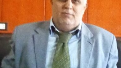 Photo of عبير مدين يكتب استغاثه